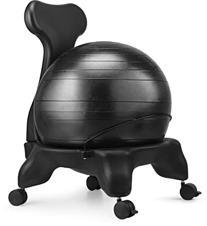 LuxFit Premium Fitness Exercise Ball Chairs