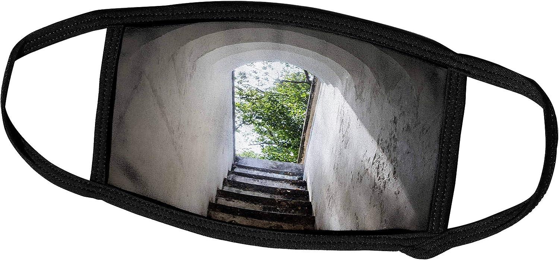3dRose Danita Delimont - Stairway - Singapore, Fort Canning Park, Bunker entranceway - Face Masks (fm_257290_2)