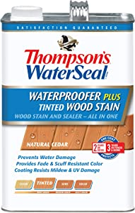 Thompson's TH.071861-16 WatersealWaterproofer Plus Wood Stain