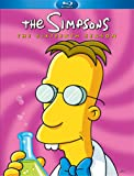 The Simpsons, Season 16 [Blu-Ray] (Bilingual)