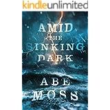 Amid the Sinking Dark (The Dread Void Book 2)