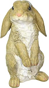 Eastwind Gifts Koehler Home Decorative Curious Rabbit Garden Statue