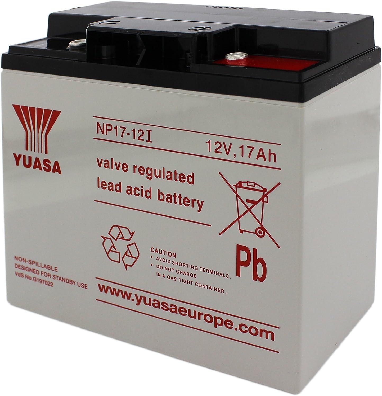 Yuasa - Batería plomo AGM NP17-12I 12V 17Ah M5-F