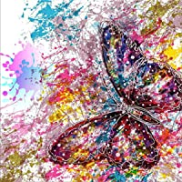 5D Diamond Painting Kits, Full Drill DIY Rhinestone Embroidery Cross Stitch Arts Craft for Home Wall Decor Butterfly 12x12inch