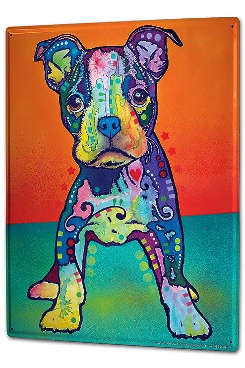 Cartello Targa In Metallo Xxl Razza Cucciolo Di Pitbull Amazonit