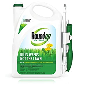 Roundup All-in-One Weed Killer for Lawns