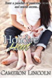 Holiday Heat: Modern Holiday Romance Erotica