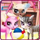 Kitty pet care salon