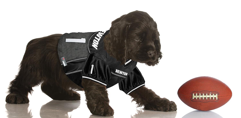 0d765665b Amazon.com   NFLPA DOG COLLAR - ANTONIO BROWN  84 Pet Collar - NFL  PITTSBURGH STEELERS Adjustable Dog Collar