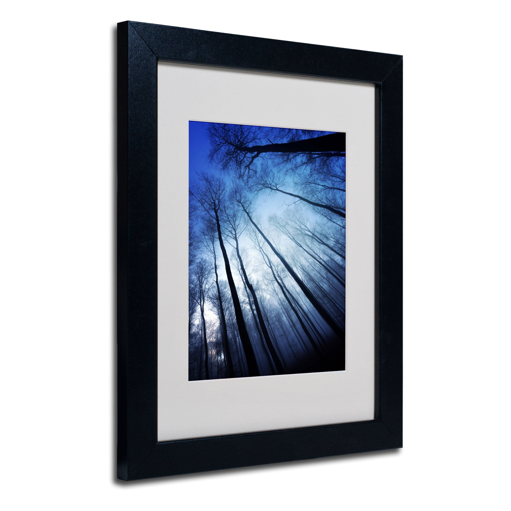 Blue Forest by Philippe Sainte-Laudy, Black Frame 11x14-Inch