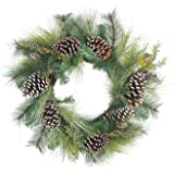 """Northlight Mixed Long Needle Pine Cone Artificial Christmas Wreath-Unlit, 28"""", Green"""