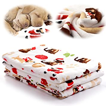 Amazon.com: kiwitatá - Manta para mascota, suave, cálida, de ...