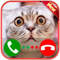A Real Live Voice Call From A Cat - Free Fake Phone Call ID PRO 2020 - PRANK FOR KIDS!