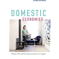 Domestic Economies: Women, Work, and the American Dream in Los Angeles (English Edition)
