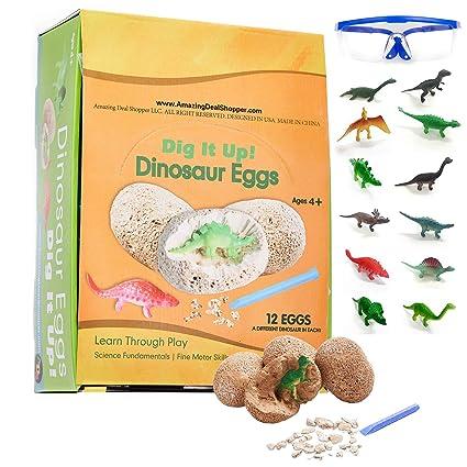 Amazon.com: ADS Ultimate 12 Dinosaurio Huevos Ciencia Kit ...