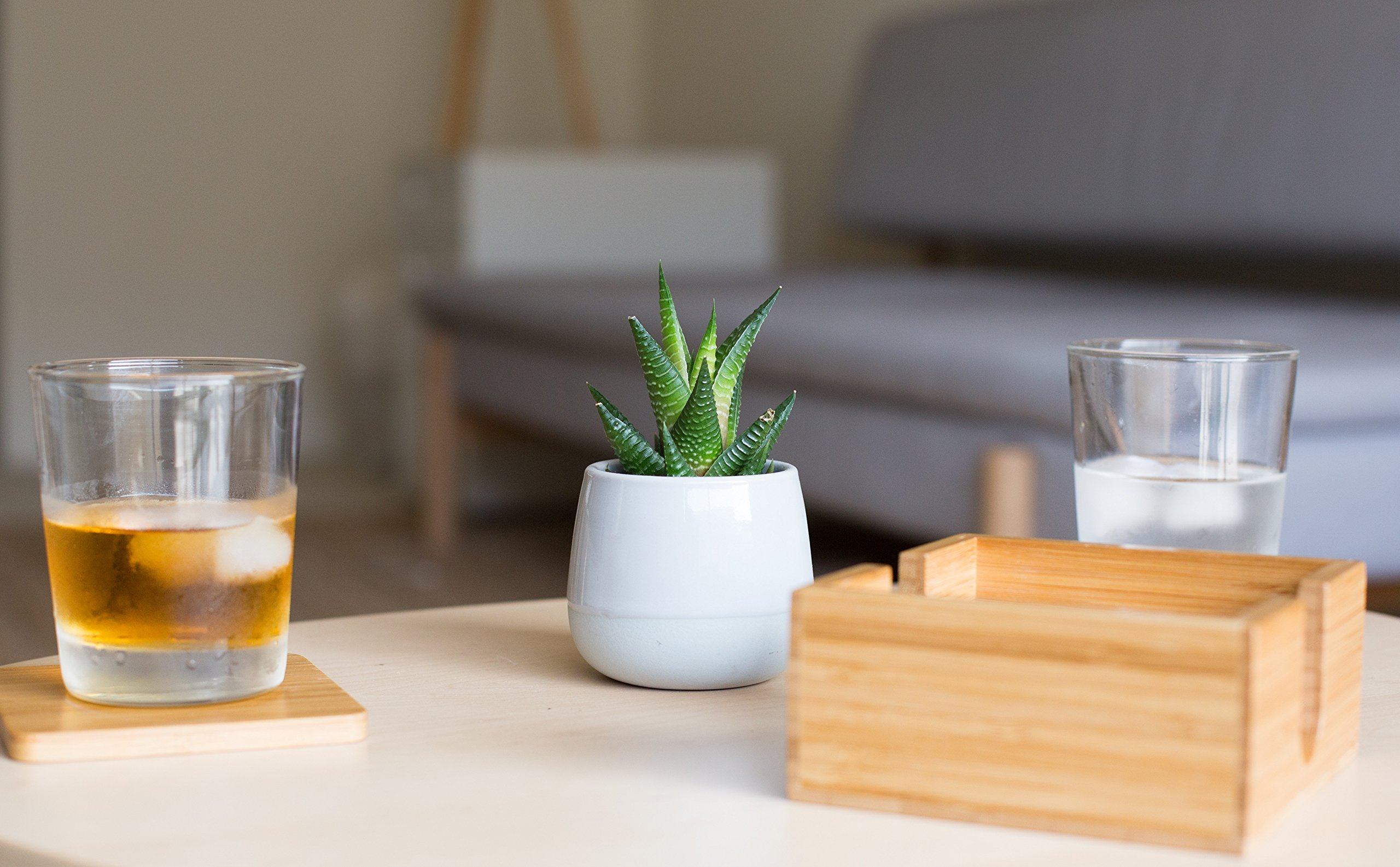 Bamboo Coasters 6 Pack with Bamboo Holder Eco-Friendly 100% Natural Wood Coaster - Stylish Furniture Protection by Kuratere