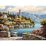 Paint by Numbers-DIY Digital Canvas Oil Painting Adults Kids Paint by Number Kits Home Decorations- Flower Castle 16 * 20 inch