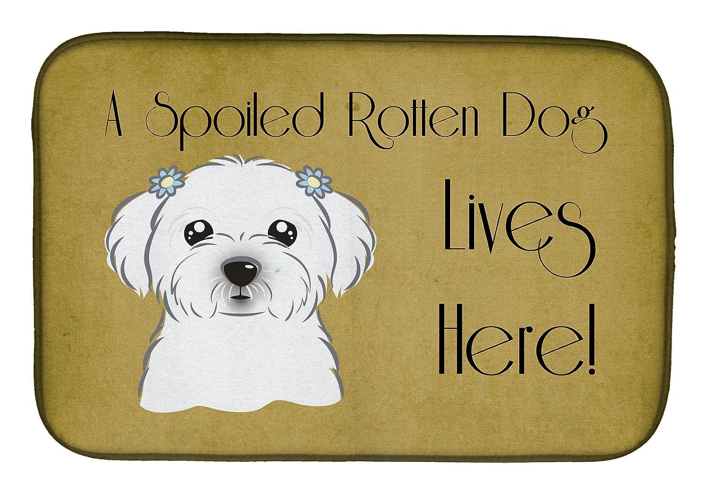 Caroline 's Treasures bb1456ddm Maltese甘やかさ犬Lives Hereディッシュ乾燥マット、14 x 21、マルチカラー   B07BQFS2GZ