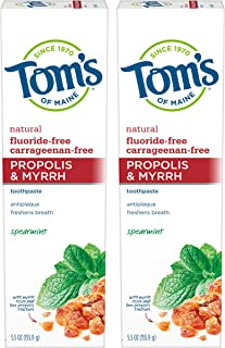 product image for Tom's of Maine Antiplaque Fluoride-free Spearmint Toothpaste with Propolis and Myrrh, 5.5 Ounce, 2 Count