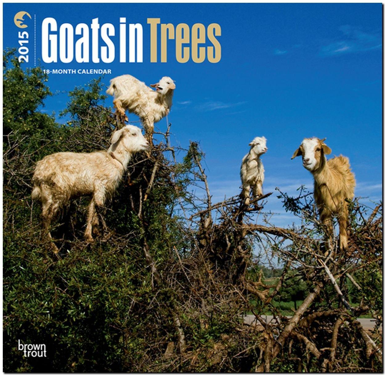 Goats in Trees 2015 - Ziegen auf Bäumen: Original BrownTrout-Kalender [Mehrsprachig] [Kalender]