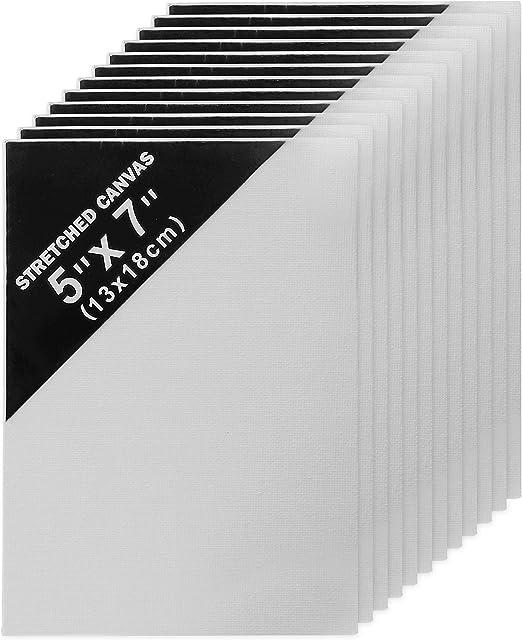 Belle Vous Lienzos (Paquete de 12) - (13x18cm) Set Lienzos Blancos ...