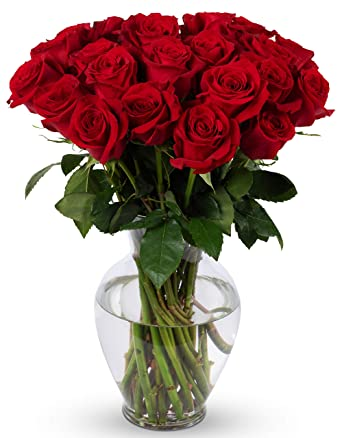 Amazon Com Benchmark Bouquets 2 Dozen Red Roses With Vase