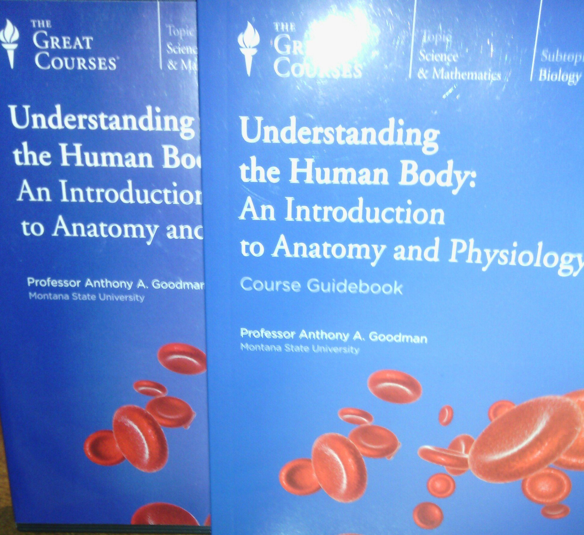 The Great Courses: Understanding the Human Body: An Introduction to ...
