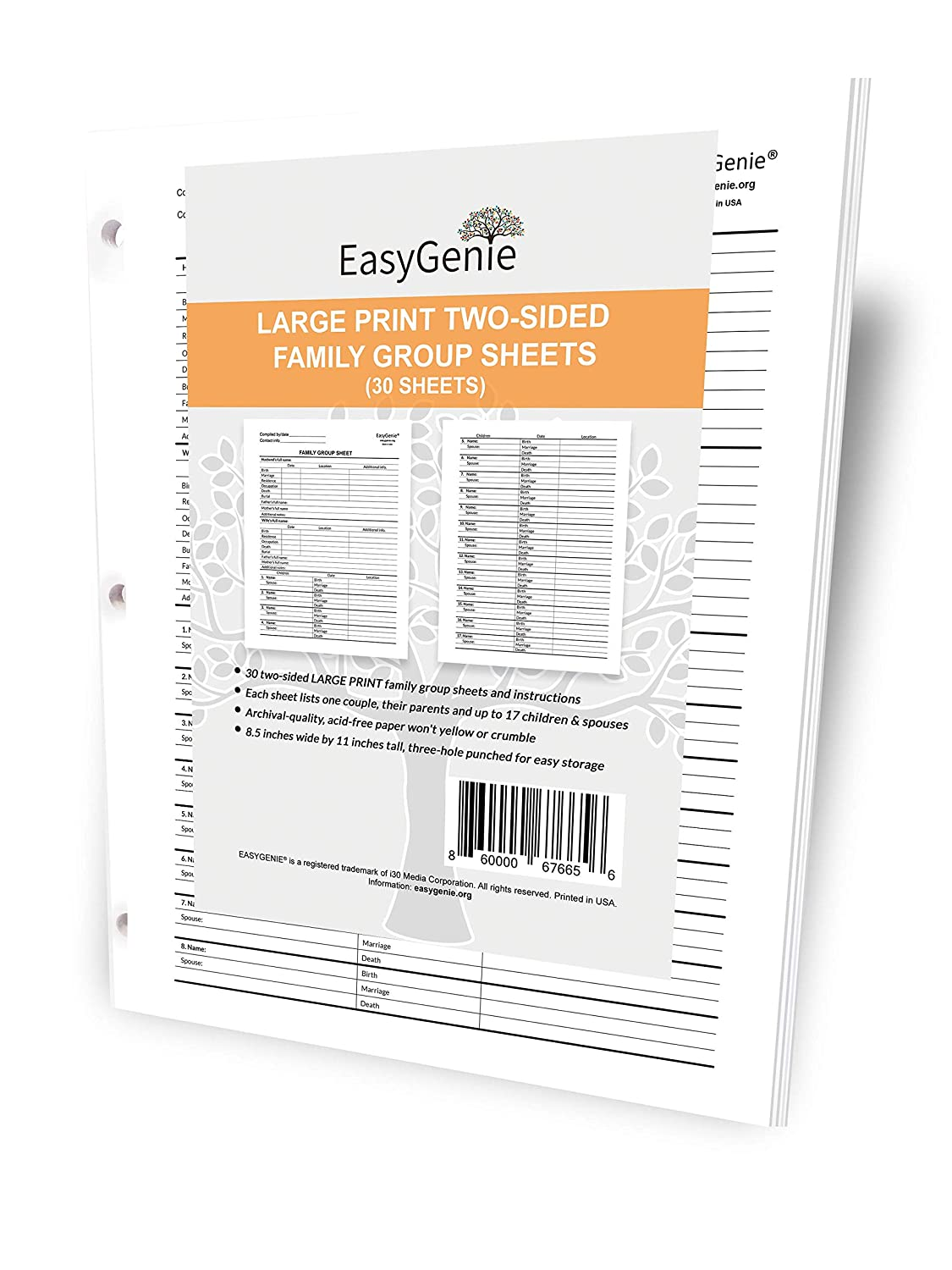 EasyGenie Large Print Two-Sided Family Group Sheets for Ancestry (30 Sheets) Archival-Quality Genealogy Forms