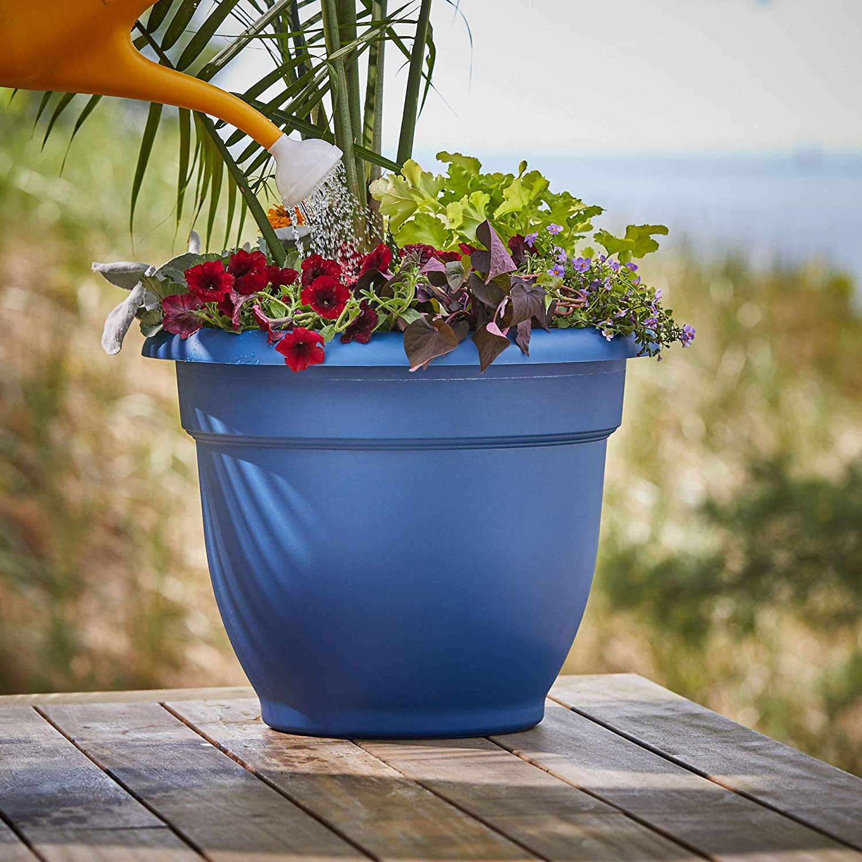 Bloem Classic JW Watering Can, 2 Gallon, Deep Sea (JW82-31), Deep Sea Blue : Garden & Outdoor