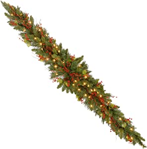 National Tree 6 Foot Classical Collection Mantel Swag with Cones, Holly Leaves, Red Berries and 50 Clear Lights (CC1-301-6-1)