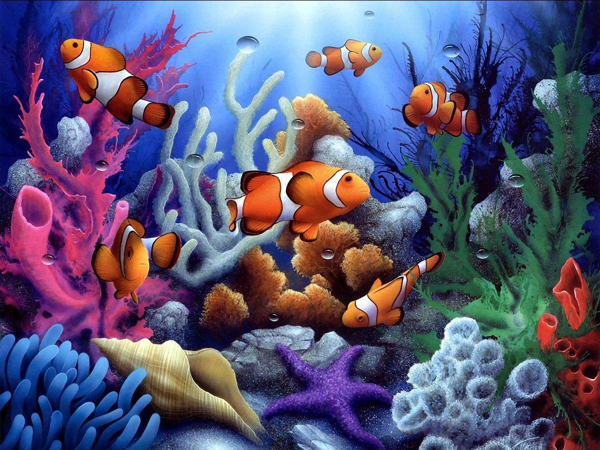 5D Pintura por Diamantes (5685) animales
