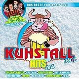 Kuhstall Hits 2014