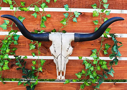 Atlantic Ebros Gift Large 27″ W Longhorn Cow Skull Wall Head Hanging Sculpture Plaque Bull Steer Wild Beast Figurine Hunters Game Trophy Bulls Cows Steers Grassland Pasture Herding Animal Decor