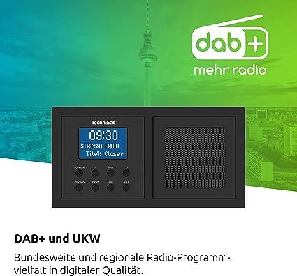 TechniSat DAB+/FM Flush-Mounted Radio Black Flush Mounting Flush ...