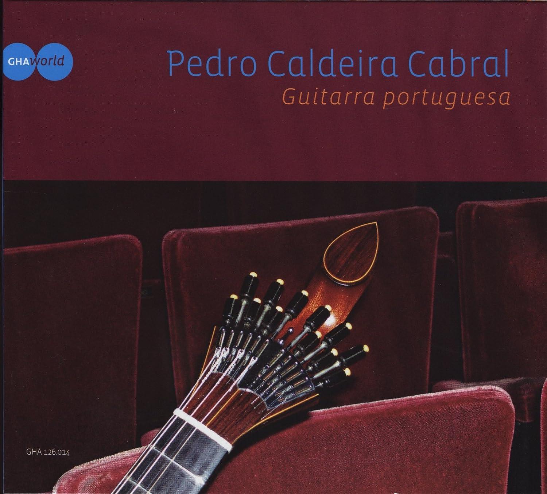 Guitarra Portugues: José Nunes, Teynaldo Vaela: Amazon.es: Música