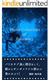 Photo Collection of Balicasag: バリカサグ島に滞在をして、朝からギンガメアジの群れに巻かれよう!
