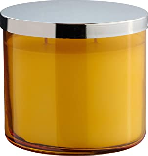 product image for Dianne's Custom Candles Luxury Highly Fragranced 2-Wick Candle - 13.5 oz (Tranquility Bamboo)