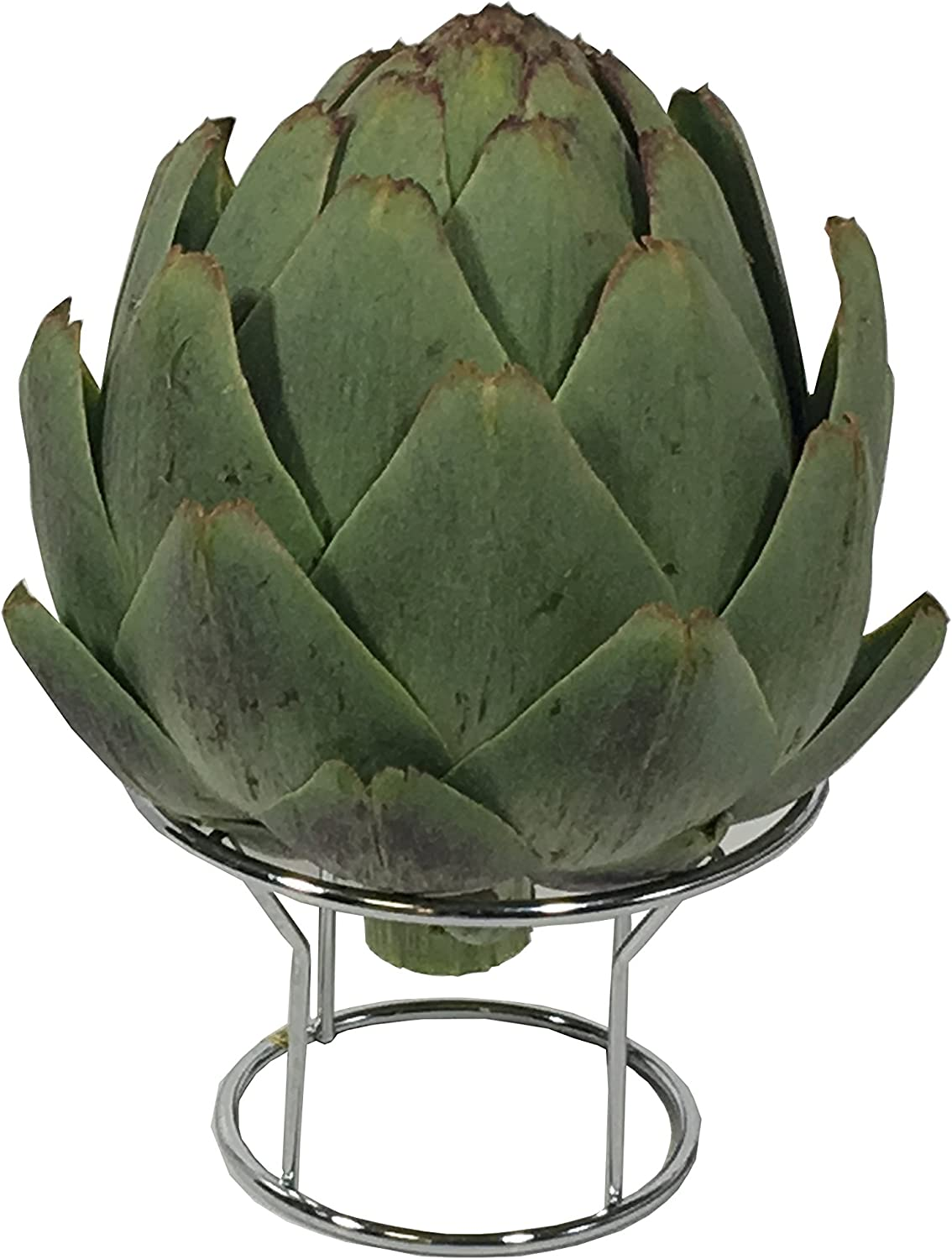 Down To Earth Stainless Steel Wire Artichoke Steamer and Holder Rack