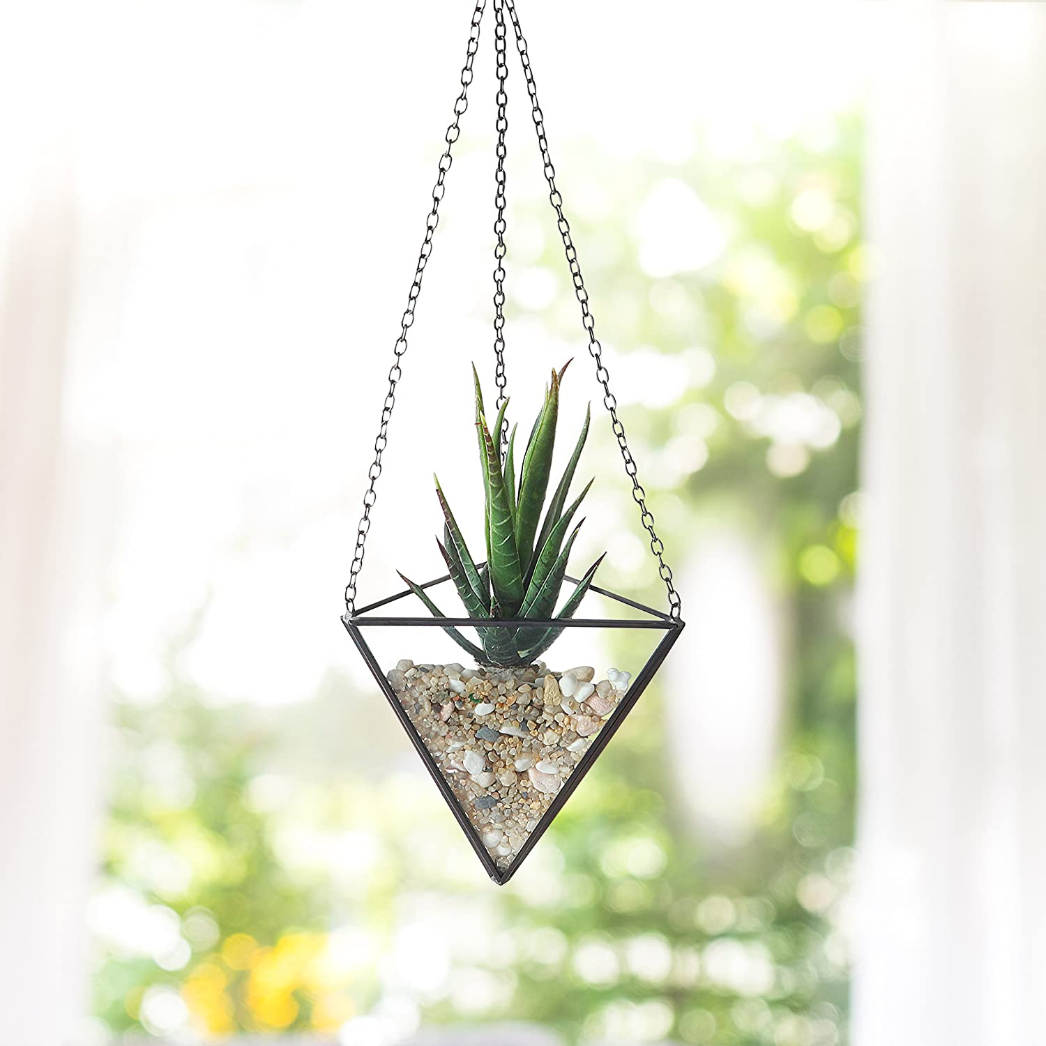 Amazoncom Clear Glass 4 Inch Hanging Pyramid Air Plant Terrarium, Succulent