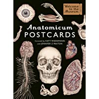 Anatomicum Postcard Box: Welcome to the Museum