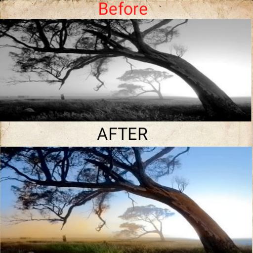 Black and White photo to Colour photo converter | Convert your any black and white photos to a colour photo. ()