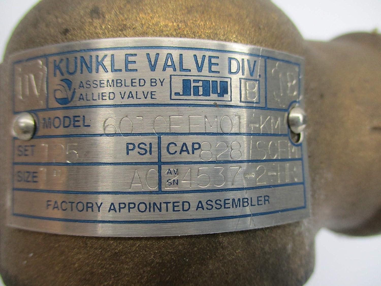 KUNKLE Valve 6010FFM01-KM 125PSI NSNP
