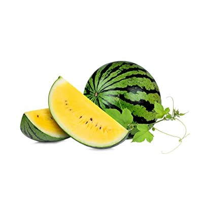 Yellow Doll Hybrid Watermelon Seeds : Garden & Outdoor