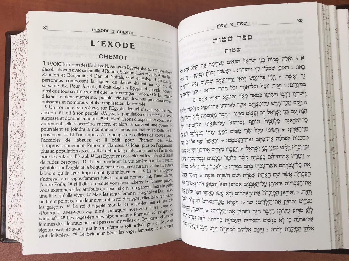 Torah hebreu french français pentateuque la bible hébraique