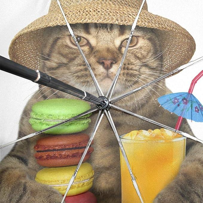74102f1e9cfd Amazon.com: ATZUCL Cat with Macaron Umbrella Folding Automatic Sun ...