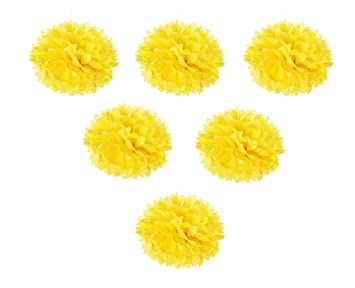 Amazon tissue pom poms flowers 6 pack tissue paper decorative tissue pom poms flowers 6 pack tissue paper decorative hanging flower balls for wedding mightylinksfo