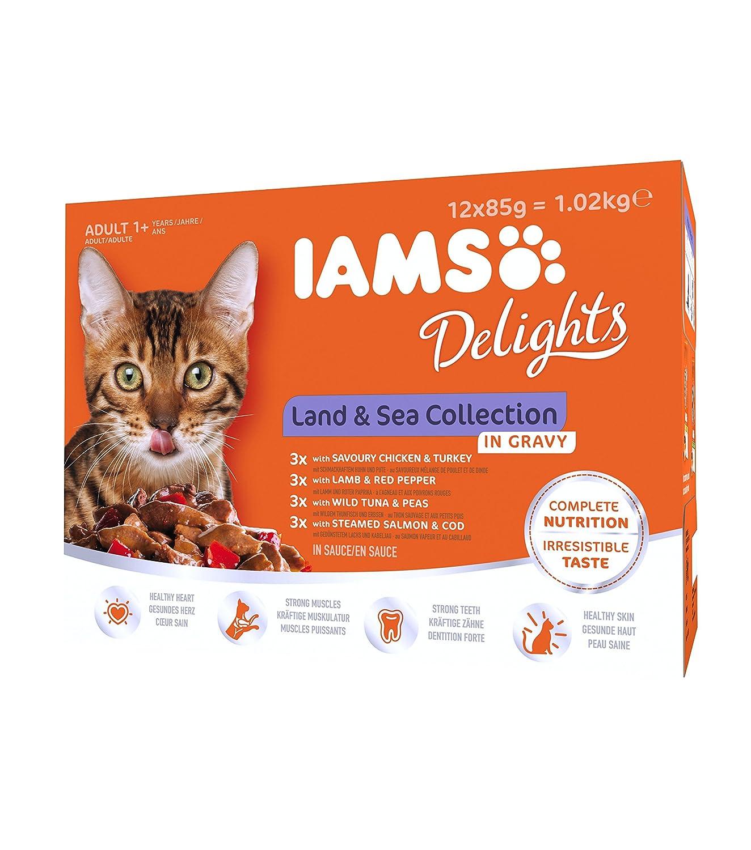 IAMS Delight - Chat adulte stérilisé ou non - 12 sachets fraicheurs exceptionnels pour des repas plaisir - 4 recettes Terre / Mer en gelée - SANS SUCRES AJOUTES, sans OGM, sans extraits de protéines végétales, sans colorants ni arômes artificiels - 12 x 85