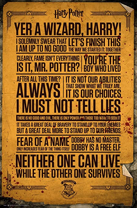 Amazon Harry Potter Poster Quotes 40 Posters Prints New Harry Potter Quotes