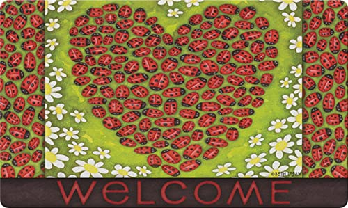 Toland Home Garden Ladybug Heart 18 x 30 Inch Decorative Floor Mat Colorful Bug Flower Welcome Doormat