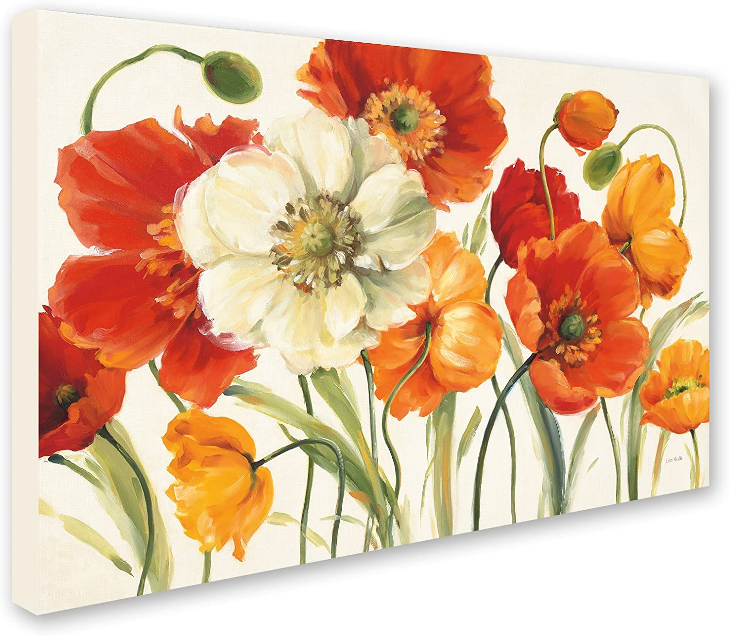 Amazon Com Poppies Melody I Wall Decor By Lisa Audit 16 X 24 Canvas Wall Art Posters Prints